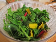 storing greens in a salad spinner